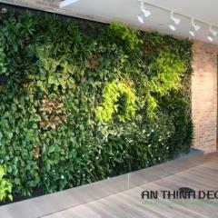Tường cây sảnh văn phòng tại Trần Duy Hưng, Hà Nội